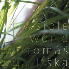 Liška Tomáš: Invisible World
