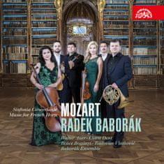Baborák Radek: Mozart: Koncertantní symfonie, hudba pro lesní roh