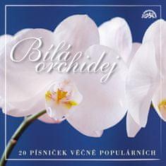 Bílá orchidej  20 písniček věčně populárních