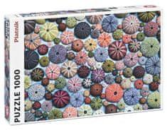 Piatnik Morskí ježkovia 1000 dielikov