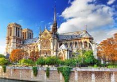 Blue Bird Cathédrale Notre-Dame de Paris 1000 dielikov