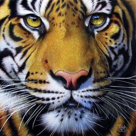 SunsOut Puzzle 1000 db Jurek - Golden Tiger Face
