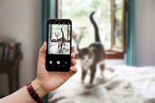 Alcatel 1S, duální fotoaparát, vysoké rozlišení, bokeh efekt, umělá inteligence