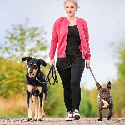 Tractive GPS Különleges vadászati kiadás, GPS nyakörv kutyáknak, vízálló, biztonságos, könnyű, törhetetlen