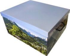 DUE ESSE Skladovací úložná krabice Fantazie, 50 × 40 × 25 cm, horská louka