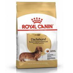 Royal Canin hrana za Jazbečarje, 7,5 kg