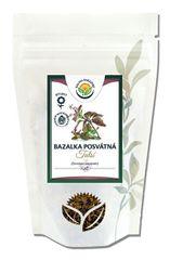 Salvia Paradise Tulsa - Bazalka posvätná vňať