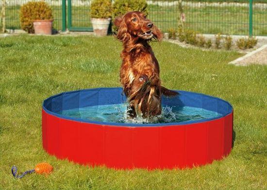 Karlie Skladací bazén pre psov modro-červený 160x30 cm