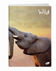 Elisa črtast A4 zvezek Wild, 52L