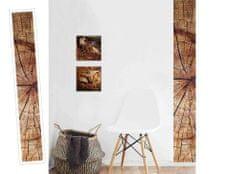 Dimex Dekoračné pásy - Drevo letokruhy, 32 x 270 cm