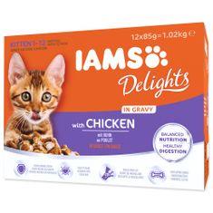 IAMS Kapsičky Kitten Delights Chicken in Gravy multipack 12x85 g