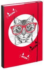 BAAGL teczka na zeszyty szkolne A4 Kot