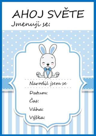 KidPro Milníkové kartičky Zajíček pro chlapečka