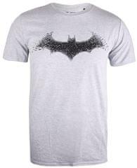 TM & DC comics koszulka męska Bat Logo