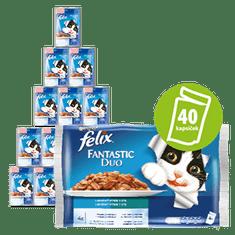 Felix Fantastic hrana za mačke, ribji izbor z zelenjavo, z lososom in bučko, s postrvjo in zelenim fižolom, 10x (4x 100 g)