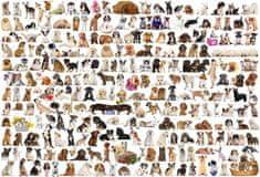 EuroGraphics Puzzle Svět psů 1000 dílků