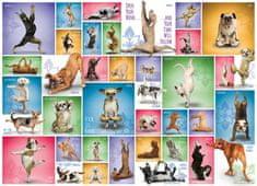 EuroGraphics Puzzle Psí jóga 1000 dílků