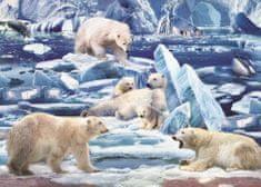 Art puzzle Puzzle 200 dielikov The Pole Bears