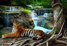 Grafika Puzzle 3900 dílků Tiger