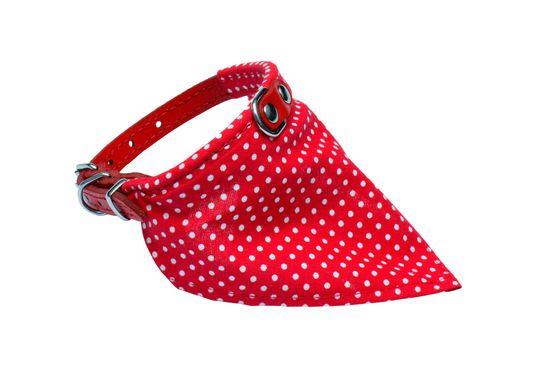 BAFPET Obojek+bavlněný šátek PUNTÍK 26 cm červená
