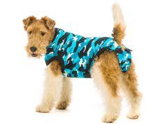 Suitical Pooperační ochranné oblečení pro psa modré