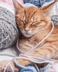 Jerry Fabrics Kočka Klubíčko