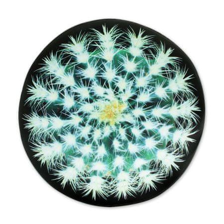 Albi Relaxační polštář kulatý kaktus