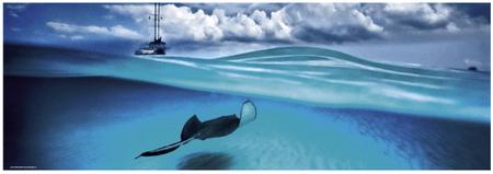 Heye Humboldt: Kajmanské ostrovy 1000 dielikov