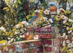 Cobble Hill Puzzle 1000 db Backyard Blues