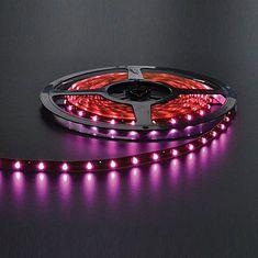 NBB NBB LED pásek 12V 60LED/m SMD5050 RŮŽOVÁ IP33 14,4W/m 254155000