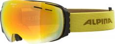 Alpina Sports Gogle narciarskie Granby HM