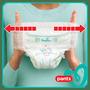 6 - Pampers pieluchomajtki Pants Maxi+ rozm. 4+ (50 szt) - pieluchomajtki (9-15 kg) – Jumbo Pack