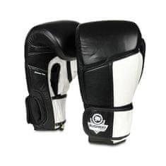 DBX BUSHIDO boxerské rukavice ARB-431 10 oz