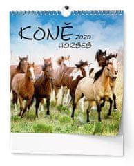 Kalendář nástěnný Ideál Koně