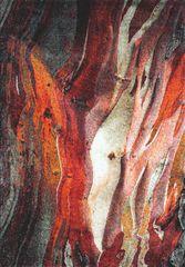 Spoltex Kusový koberec Rust red 21304-910