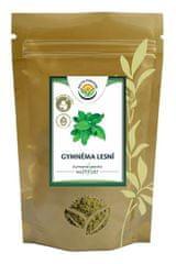 Salvia Paradise Gymnema lesné list mletý BIO 100 g
