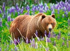 Castorland Bear on the meadow II 120 dielikov