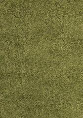 Ayyildiz AKCE: 65x130 cm Kusový koberec Dream Shaggy 4000 green