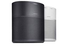 Bose Home Speaker 300, zvučnik