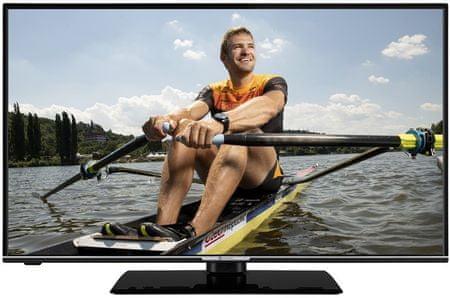 GoGEN telewizor TVF 43R552 STWEB