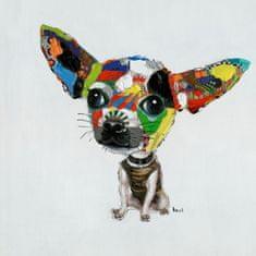 KARE Olejomaľba Chihuahua 50x50cm