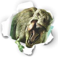 Zooyoo Samolepka na zeď Dinosauři Jurský park 3D 50 x 50 cm 3