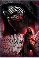 STAMION Fleecová / fleece deka Star Wars Kylo Ren Stormtroopers 100x140