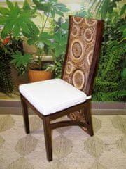 Jídelní židle Haifa-banánový list-mahagon