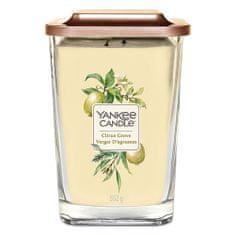 Yankee Candle Svíčka ve skleněné váze , Citrusový háj, 552 g