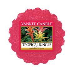 Yankee Candle Yankee gyertya, Trópusi dzsungel, 22 g