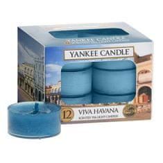 Yankee Candle Yankee gyertya tea gyertyák, Éljen Havanna, 12 db