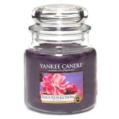 Yankee Candle Świeca w szklanym słoju Świeca Yankee, Kwiat czarnej śliwy, 410 g