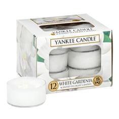 Yankee Candle Yankee gyertya tea gyertyák, Fehér gardénia, 12 db
