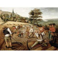 D-Toys Brueghel: Summer 1000 dielikov